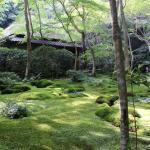 京都の寺と名所を巡る旅 祇王寺から大覚寺