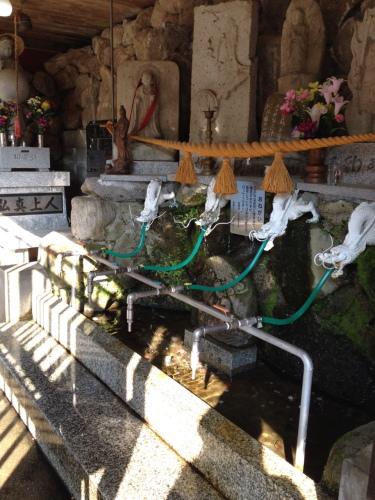 奇跡の水 穴の谷(あなんたん)の霊水を30年ぶりに汲む