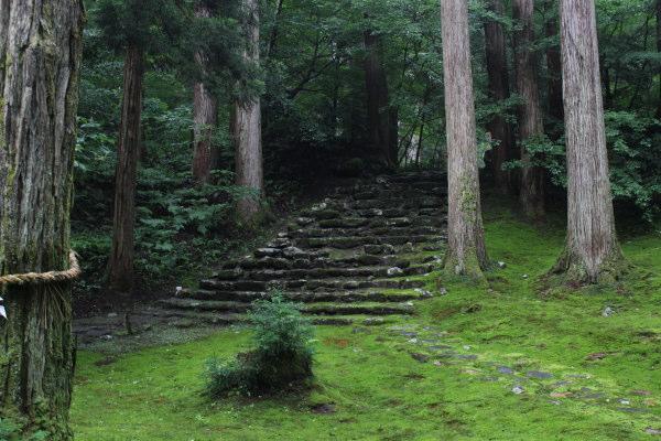 参道横池福井北陸の苔寺 白山平泉寺