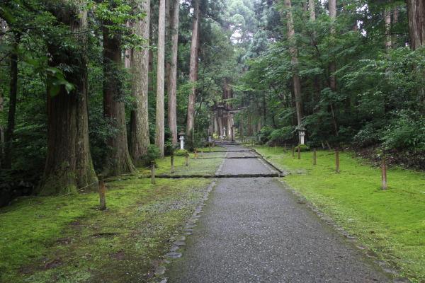 参道:入り口福井の癒し系観光スポット見つけた!北陸の苔寺こと平泉寺白山神社
