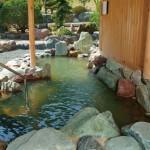 氷見温泉郷民宿いけもりさんの庭園露天風呂で日帰り入浴