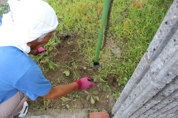 雑草むしり・草抜き取り・草刈りの施工例