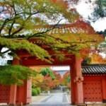 京都の穴場観光なら真如堂がおすすめ!【隠れた名所スポット】