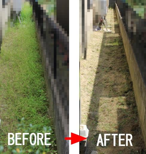 草むしり・草抜き・草刈り施工例画像