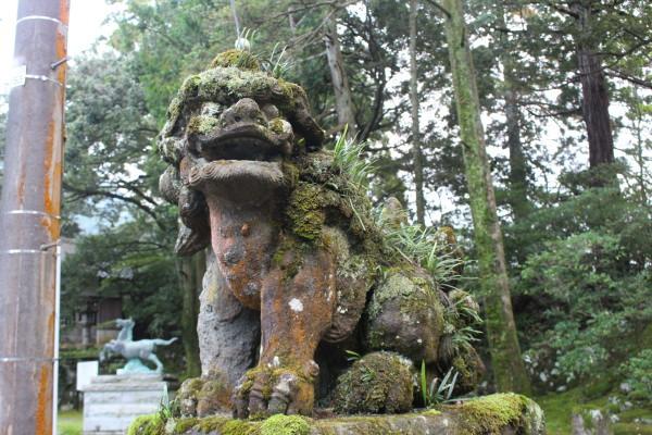 神社:井波(いなみ)灯りアートで瑞泉寺ライトアップ&閑乗寺ハッピーセブン
