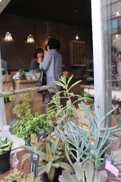 4646(ヨロヨロ)農園店先から店内画像:富山市中島