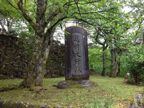 頂上付近 福井観光:片道20分で程良いハイキングするなら越前大野城