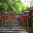 階段:京都観光:京都屈指のパワースポット!貴船神社(京都市左京区)に行ってみた