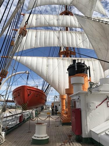 海王丸 総帆展帆