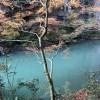 川 石川で、紅葉なら山中温泉鶴仙渓(かくせんけい)