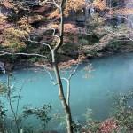 石川の紅葉なら遊歩道完備の山中温泉鶴仙渓がおすすめ