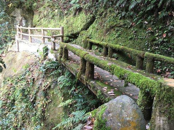 遊歩道 石川で、紅葉なら山中温泉鶴仙渓(かくせんけい)