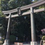 九州最大のパワースポット高千穂神社(宮崎県)で運気あげてきました