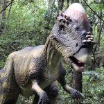 大人気の福井県立恐竜博物館へ行ってきた