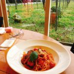 金沢ランチ:豪華サラダ食べ放題!イタリアンカフェぶどうの木へ