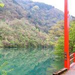 南砺市でランニング&ウォーキングコースなら庄川水記念公園遊歩道!