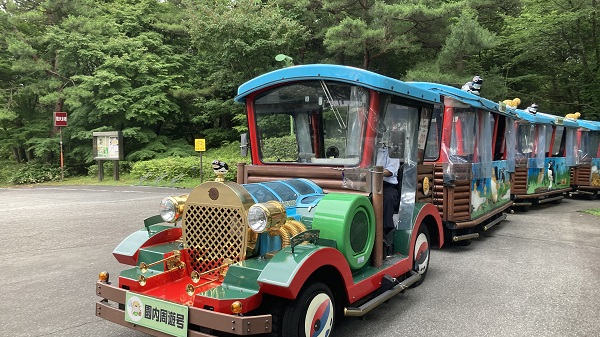 太閤山ランドのあじさい祭りはトレーンに乗って巡るのがオススメ