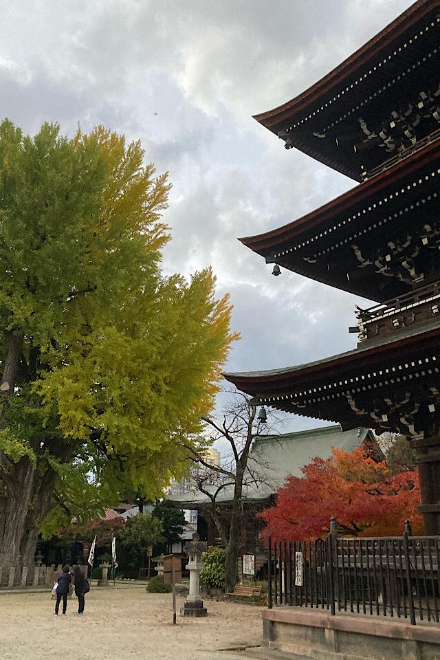 飛騨国分寺 食べ走りにピッタリ!飛騨高山中心部はシティランニングに最適