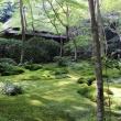 観光:京都の寺と名所を巡る旅 祇王寺から大覚寺
