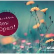 DM表面:富山の花屋さん「4646農園」様 ショップカード・DM等デザイン制作