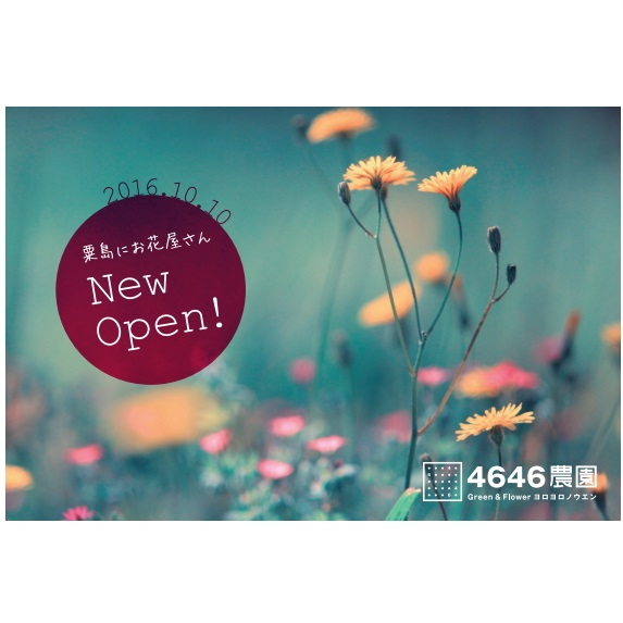 富山のお花屋さん4646農園様 ショップカード・DMなどデザイン制作